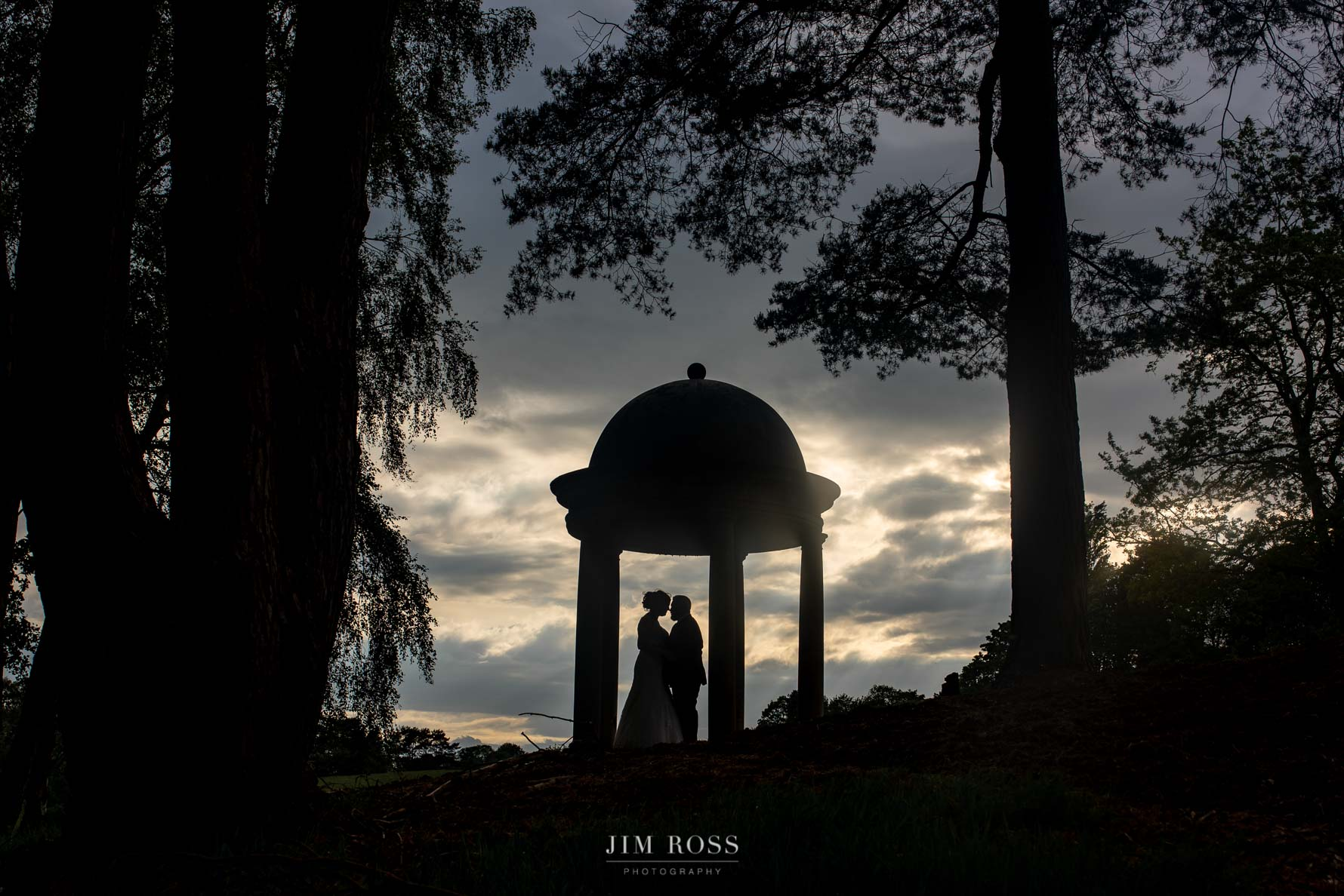 Delamere Manor wedding silhouette